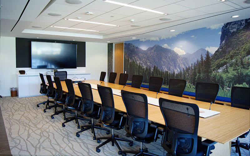 custom mural wall covering - guidance software