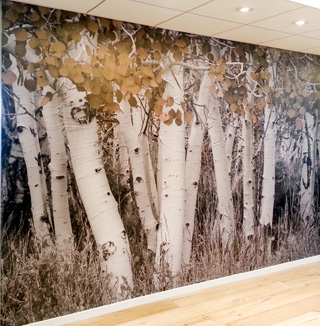 Image of 3D trees wall covering
